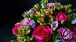 Top Tips to Improve the Longevity of your Flowers